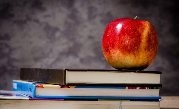Comment bien se préparer pour une rentrée scolaire à son meilleur! | Oasis de santé